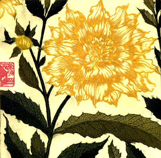 """'Dahlia' limited edition 13 of 30, 14"""" x 13"""", etching on somerset cream paper"""