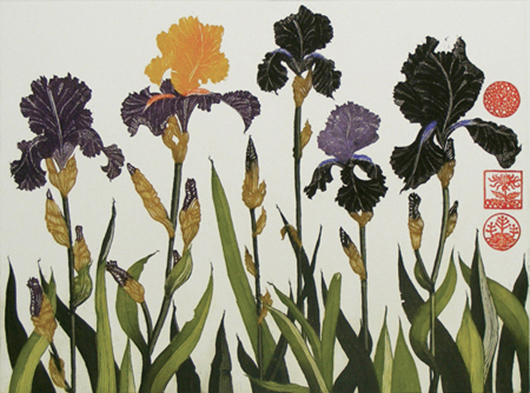 """'Flag Irises' limited edition 16 of 30, 25"""" x 21"""", etching on grey BFK rives paper"""